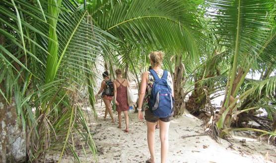 Jungle beach trek