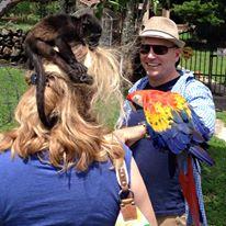 Volunteer work at Animal Shelter in Boquete