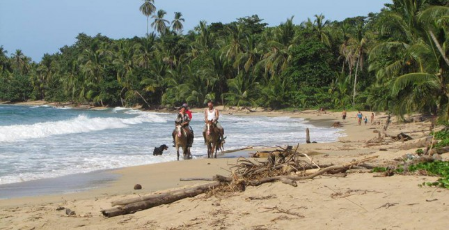 Explore the caribbean coastline by horseback - Puerto Viejo