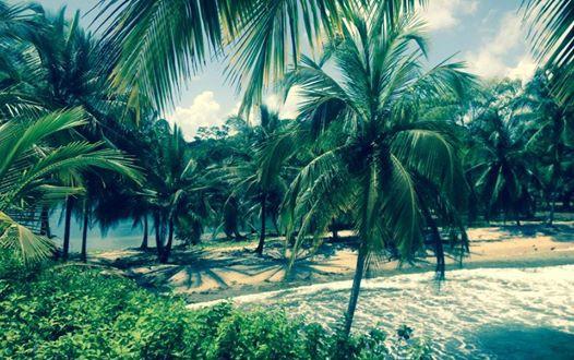 Isla Caranero - Bocas del Toro