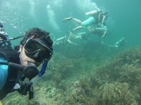 Scuba classes in Bocas del Toro