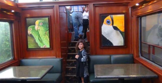Inside of the Jungle Train Panama City to Colón