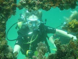 Learn to scuba dive in Bocas del Toro