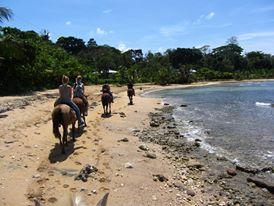 Beach by horseback - Puerto Viejo