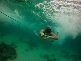 Under the sea tour - Zapatilla - Bocas