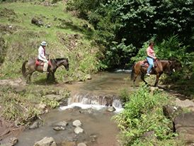Find your inner cowboy in Boquete