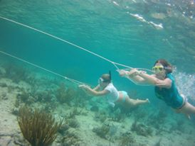Extreme snorkelling! - Bocas
