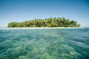 Island with palm trees and crystal blue waters