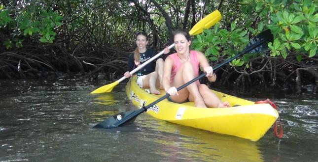 Kayak the Mangroves of Bocas