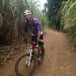 Man on bike in sugarcane fields