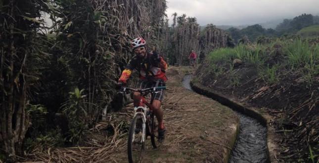 Mountain biking in sugarcane fields
