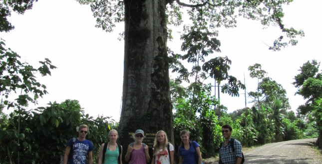 Eco -Tourism by foot
