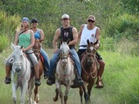 Horseback adventure tours - Turrialba