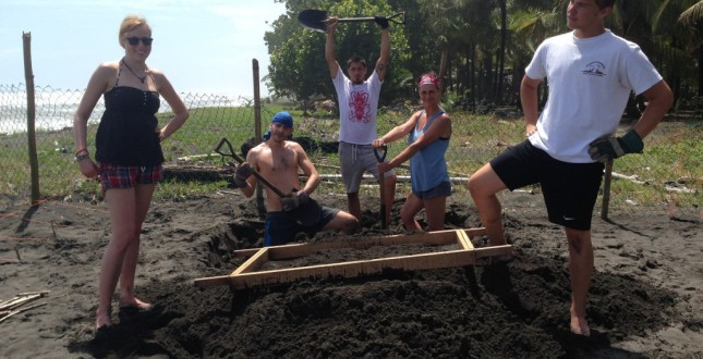 Preparing sand for the hatchery