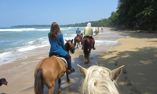 Horseback riding on the beach in Puerto Viejo