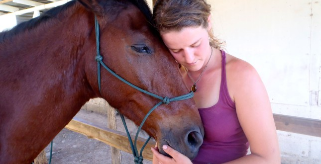 Volunteer with horses in Puerto Viejo